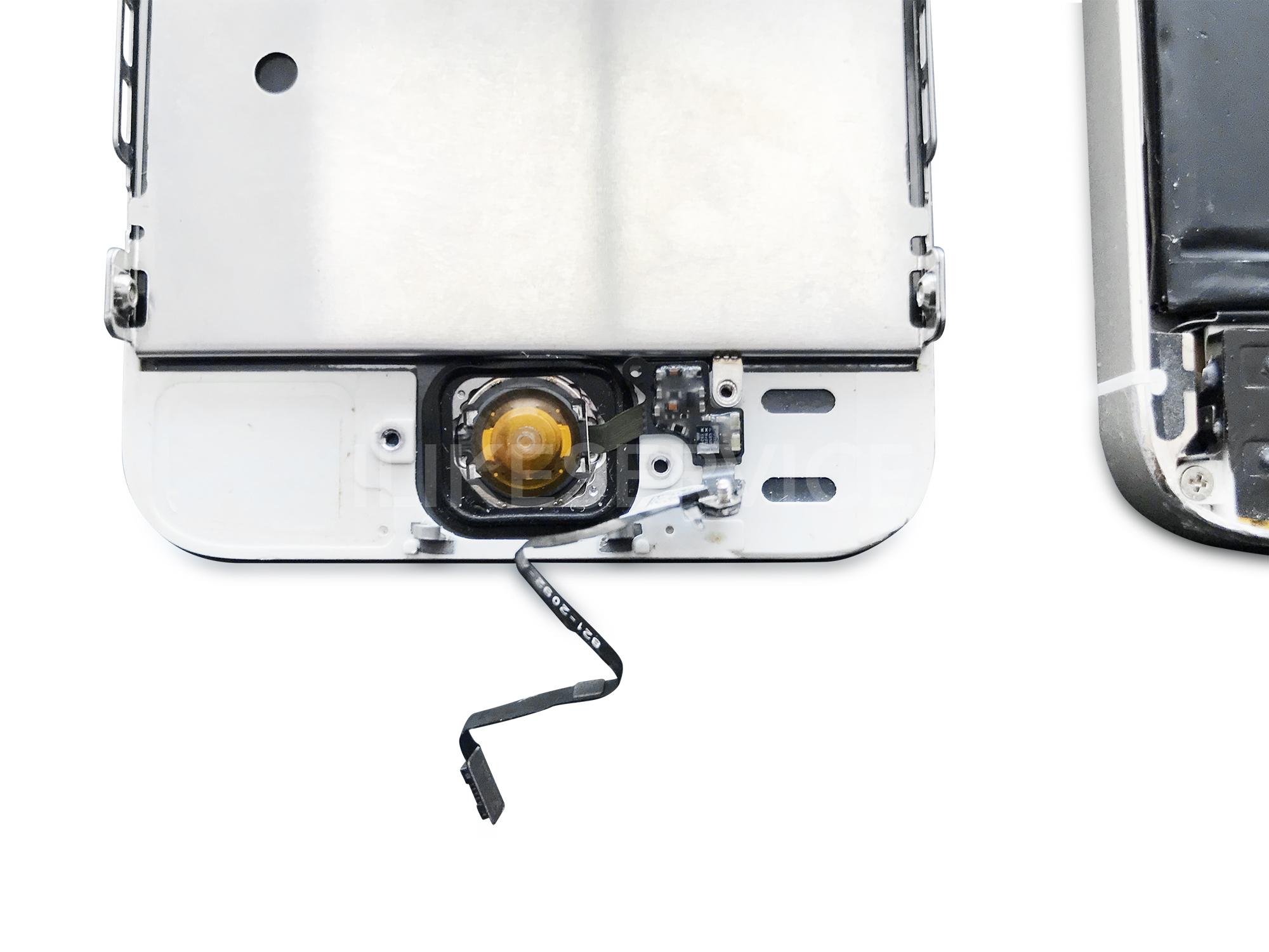 замена кнопки home iphone 5s фото